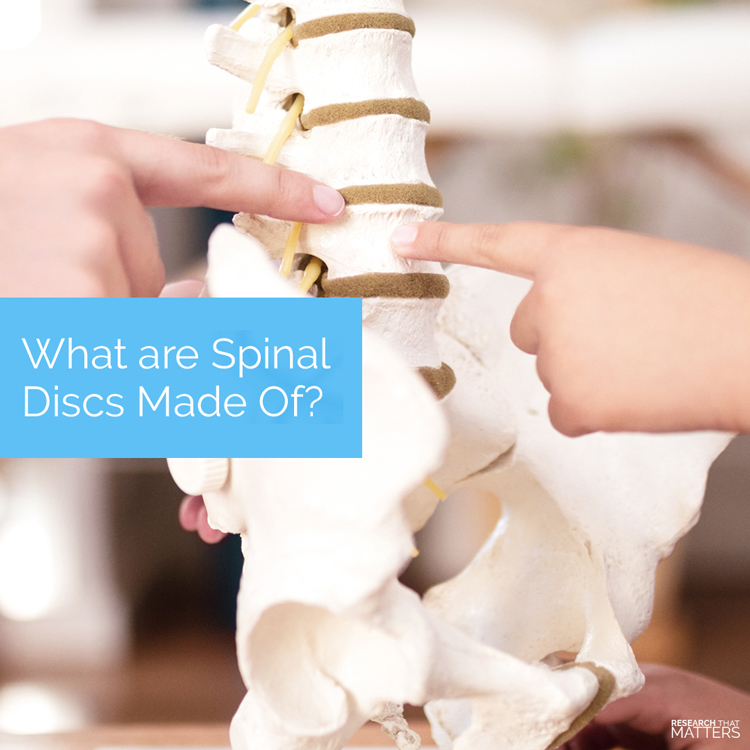 Chiropractic Coral Springs FL Spinal Disc Pain